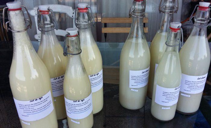 Lait végétal en bouteilles stérilisées